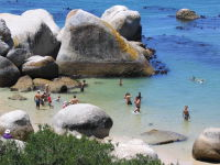 South African Tourist destinations, Cape Town Tourist attractions and destinations, Boulders Beach