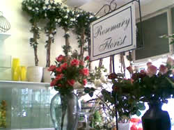 Rosemary Florist in Sea Point, Western Cape