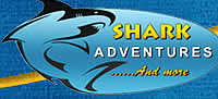Shark Adventures, diving in Cape Town, Gansbaai