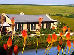 Rondekuil : Durbanville self catering accommodation and B&B at its best