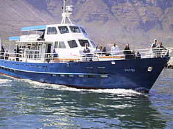 Circe Launches boat trip to seal island