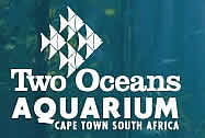 Two Oceans Aquarium Cape Town South Africa, Cape Town Aquarium